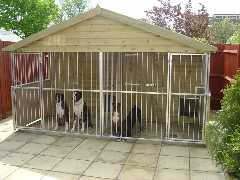 Kennel dog houses buy dog kennels in cananda for Building a dog kennel business